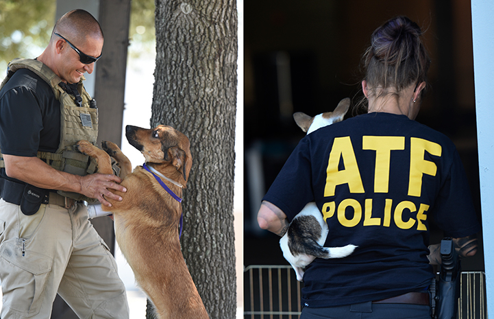 ATF police helping animals after Hurricane Harvey