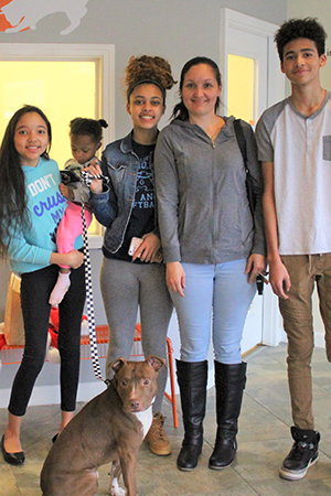 Harvey the dog being adopted by his new family
