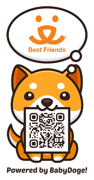 Powered by Baby Doge Coin