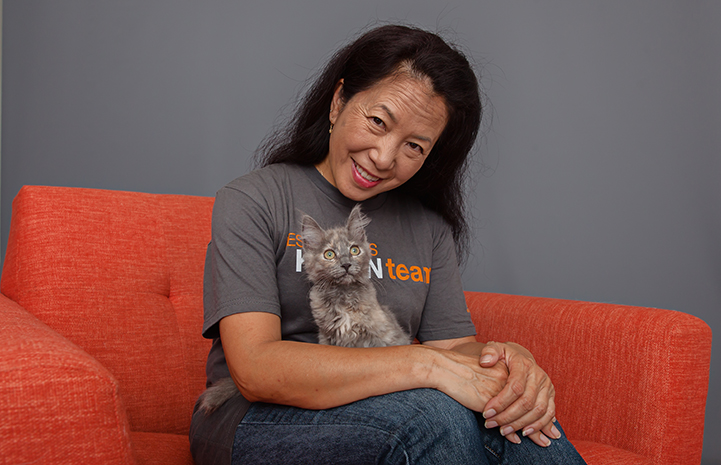 Smiling woman on an orange chair holding Rogue, the dilute tortoiseshell kitten, in her lap