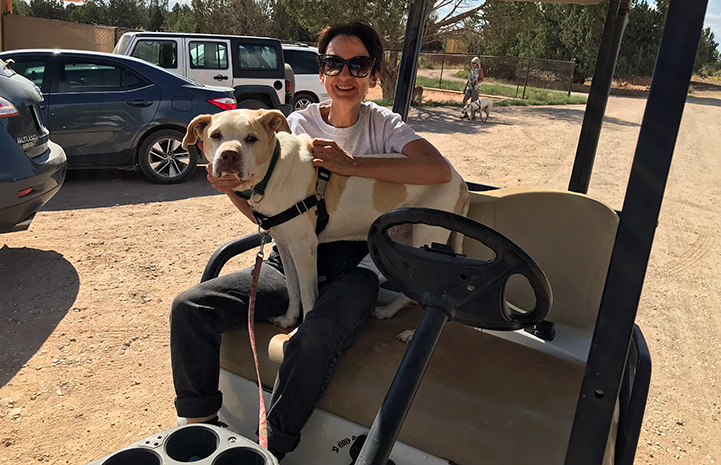 Donna Cerio sitting in a golf cart with a tan and white dog sitting in her lap