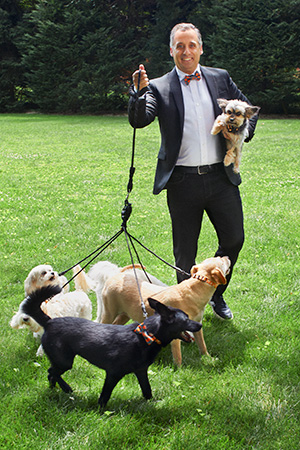 Joe Gatto in a suit holding one dog and walking four more on leashes