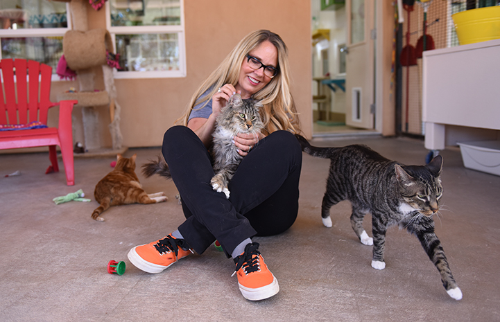 Julie Castle sitting on the ground with a cat on her lap and other cats surrounding her