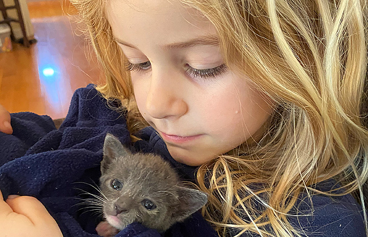 Young girl cuddling a small gray kitten in a blanket