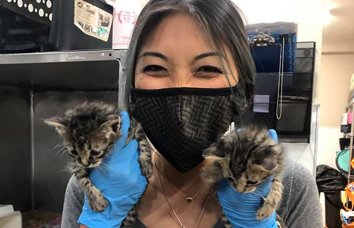 Smiling person wearing a mask holding two kittens (one in each gloved hand on either side of her face)