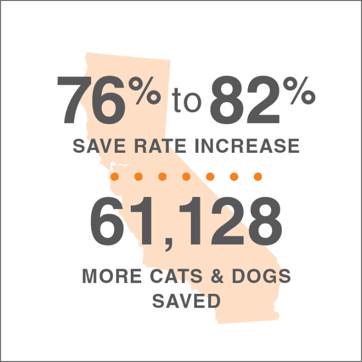lifesavings statistics for California overlaid on an image of the state