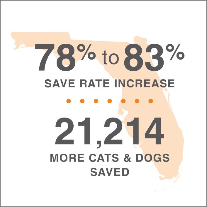 lifesavings statistics for Florida overlaid on an image of the state
