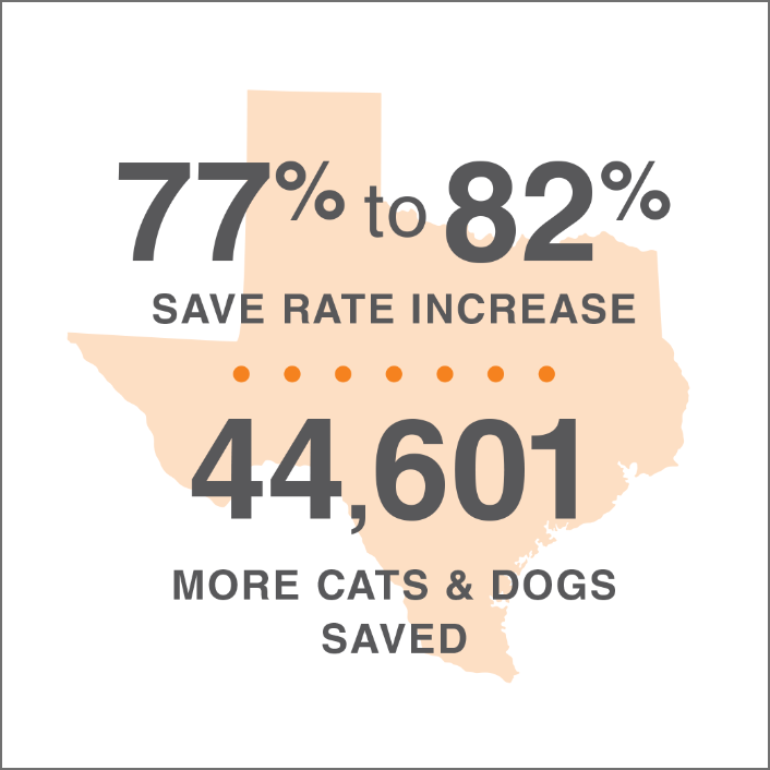 lifesavings statistics for Texas overlaid on an image of the state