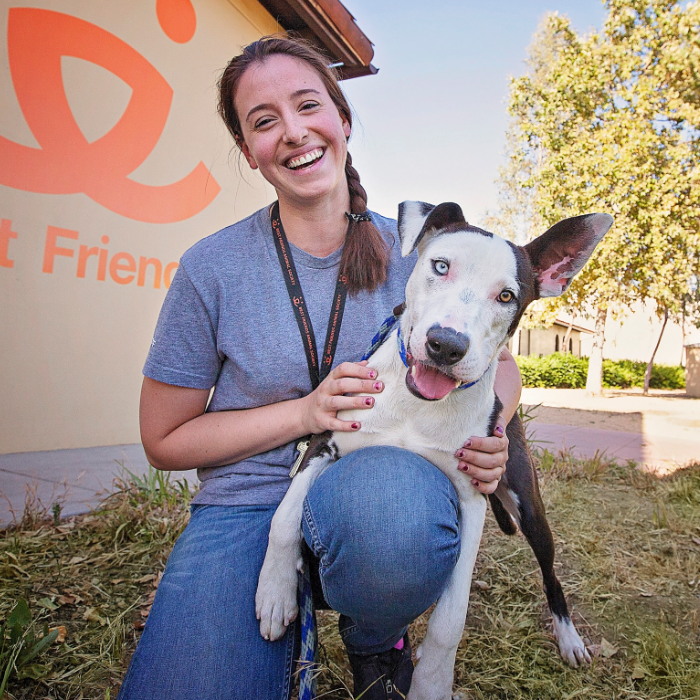 Animal welfare worker with Great Dane type dog at Best Friends L.A. Center