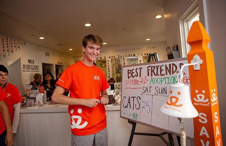 Young volunteer Jack smiling and standing next to a bell and dry erase board listing the cat adoptions