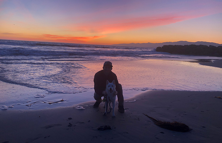 Man posing with Luna the dog at the beach with water and a lovely sunset behind them