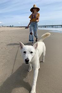 Woman walking Luna the dog on a leash on a beach