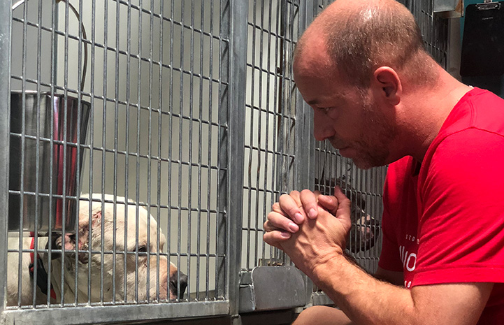 Scott Poore looking in through the bars of a kennel at a dog
