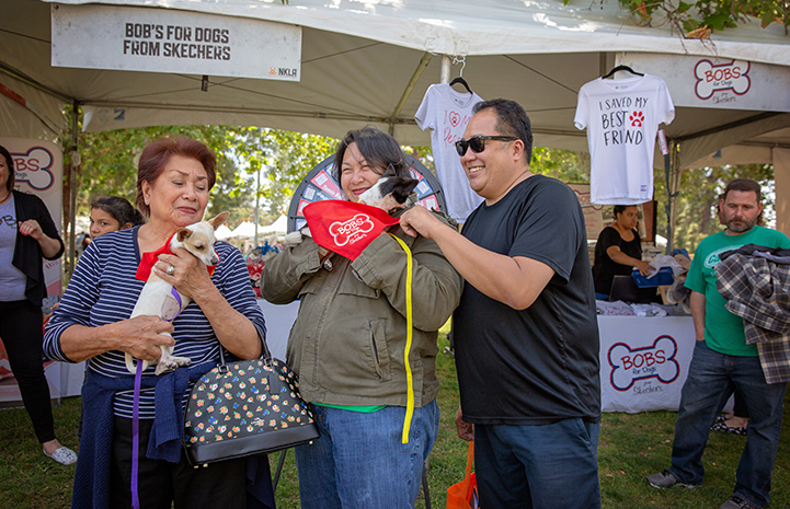 Group of three people holding two small dogs in front of the BOBS for Dogs booth at A tent with human and dog activity at the NKLA Pet Super Adoption