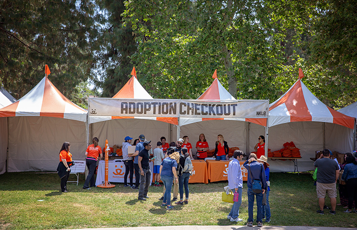 The Adoption Checkout tent area at the A tent with human and dog activity at the NKLA Pet Super Adoption event