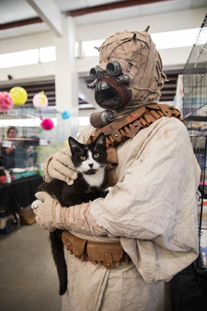 Raiser the black and white cat being held by a Boe Tusken Star Wars character at the May the 4th NKUT Super Adoption event