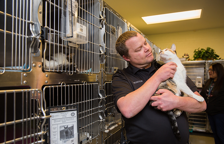 Animal control officer holding a cat in front of some kennels