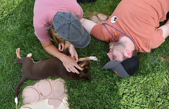 Puppy lying on his side in the grass next to two volunteers