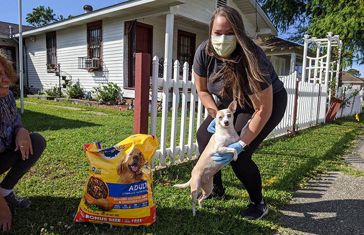 Woman wearing a mask with a small Chihuahua dog and some food she delivered