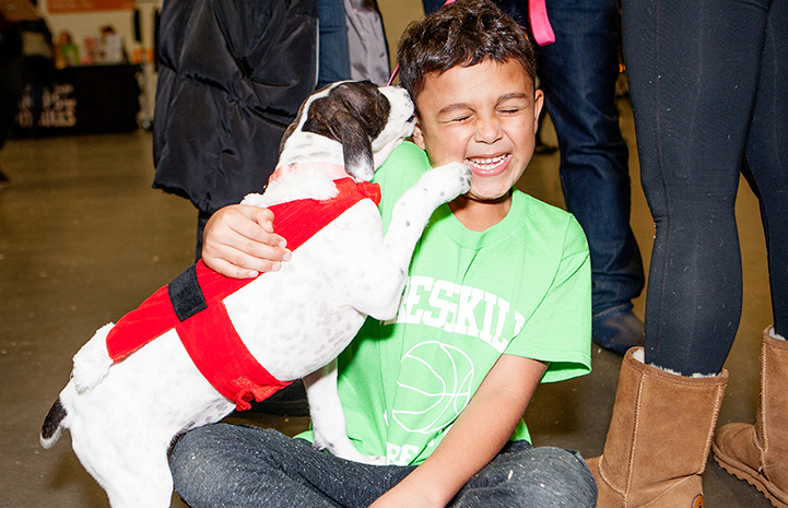 This dog was all kisses when looking for a home at the New York Super Adoption
