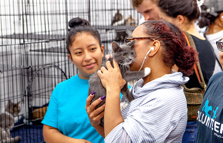Woman holding a gray and white kitten while another woman looks at them at the New York cat adoption event