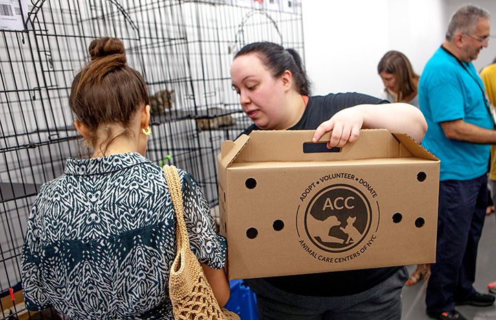 Woman handing a cardboard carrier to another woman at the New York cat adoption event