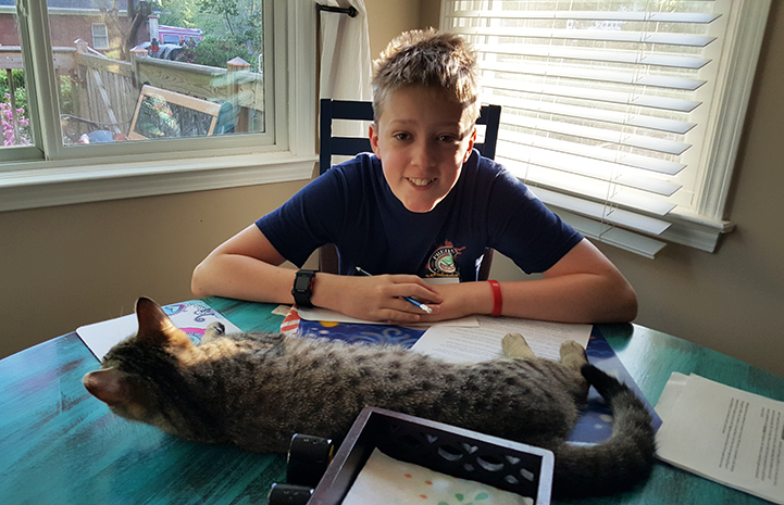 Kona the brown tabby cat and Lisa Borden's son have a special connection