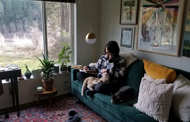Zion the cat in the lap of his new person, who is sitting on a couch next to a window