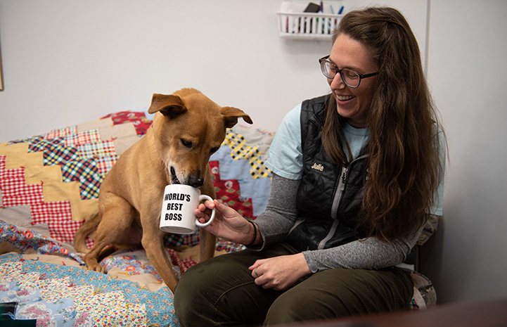 Smiling woman holding a World's Best Boss mug for Shocky the dog to drink from