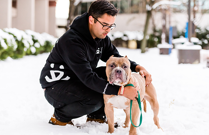 Megatron, an older tan and white pit-bull-type dog with cropped ears, next to a man wearing a Best Friends sweatshirt in the snow