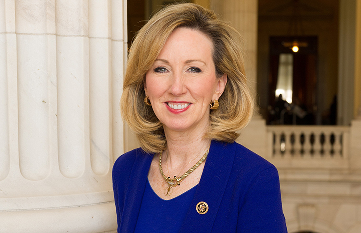 Congresswoman Barbara Comstock, Virginia