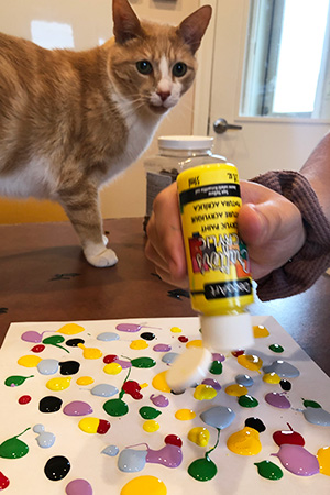 Orange and white cat looking at person squirting paint on paper