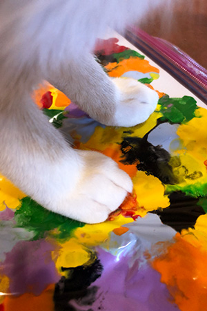 White cat paws stepping on the paint to create the painting
