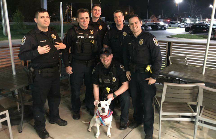 Group of police officers in the outside area of a restaurant with a white and black dog with them