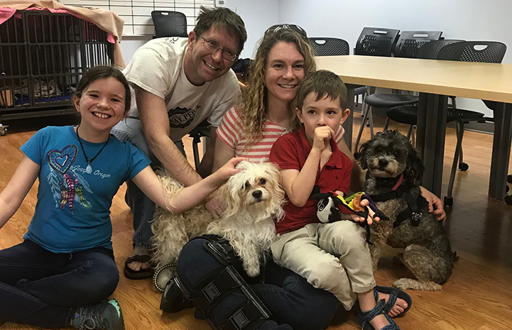 Max the dog being held by his new family
