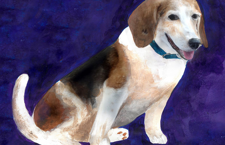 Painting of a beagle type dog