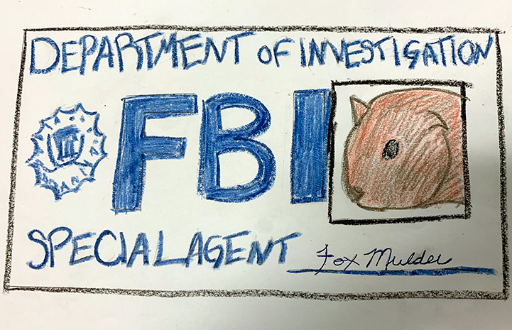 Drawing of a guinea pig on an FBI ID card with the name Fox Mulder