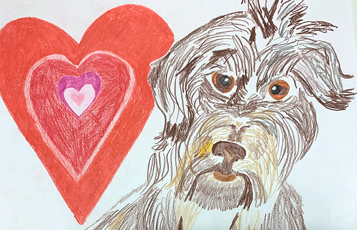 Painting of fluffy brown dog next to a heart