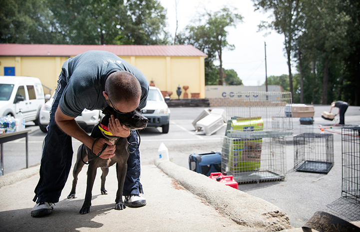 Man leaning over to hug a dog, with kennels and carriers surrounding them