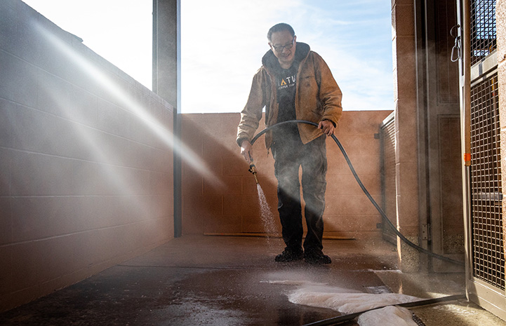 Steven the Dogtown caregiver hosing down the floor to clean it with sunlight streaming in from a window