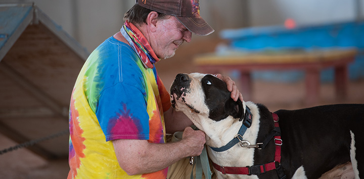 Man in tie-dyed T-shirt training a black and white dog