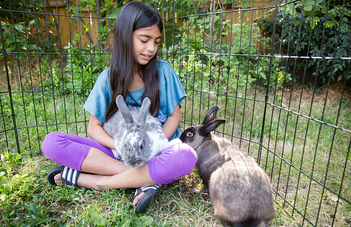 Newly adopted rabbits Flora and Fauna with Siddha Campbell