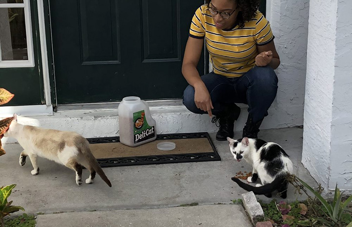 Person sitting on a step with a container of cat food and two cats