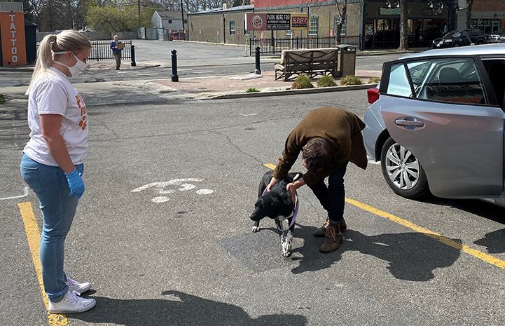 Woman meeting a dog outside while another person wearing a protective mask watches