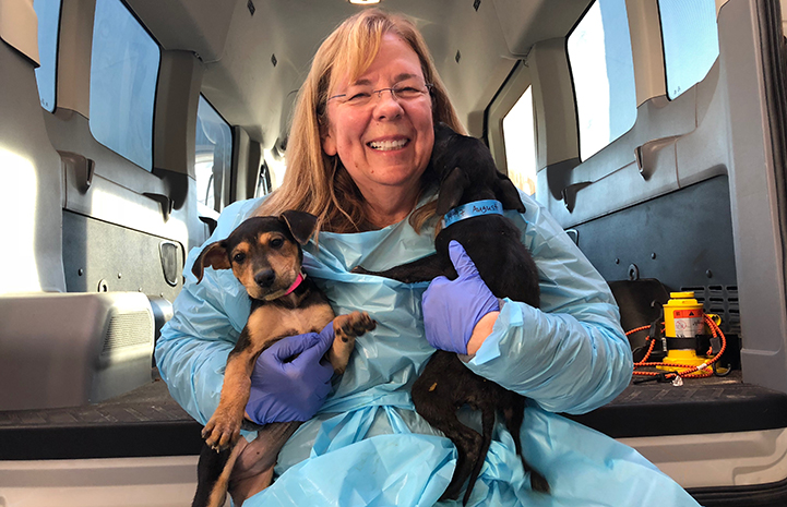 Smiling woman in a protective gown holding two puppies
