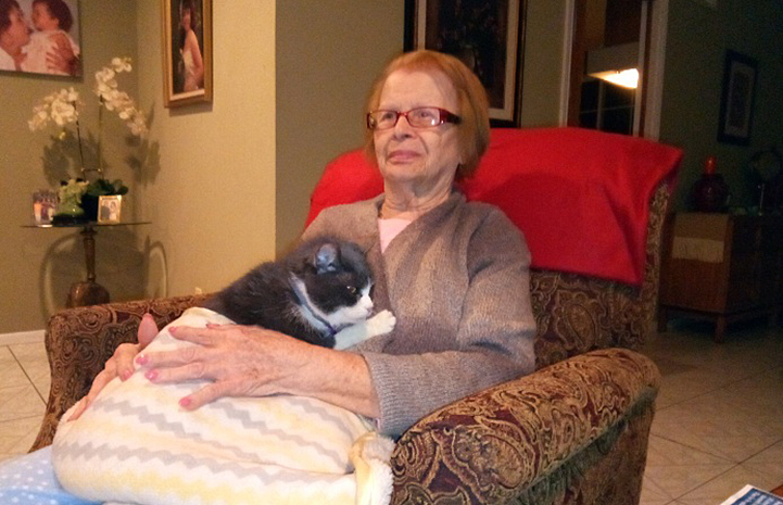 As soon as her grandmother sat down, Gloria the cat jumped up and sat down next to her