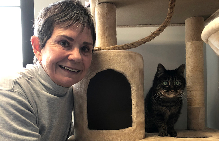 Barbara with Daisy the senior brown tabby cat in a cat tree at the Best Friends Pet Adoption Center in Salt Lake City