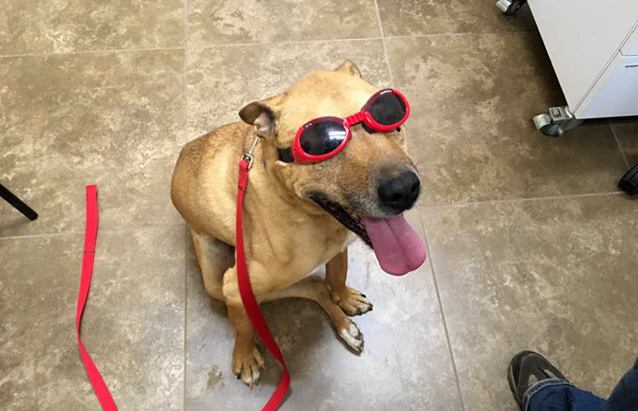 Romo in his laser treatment goggles