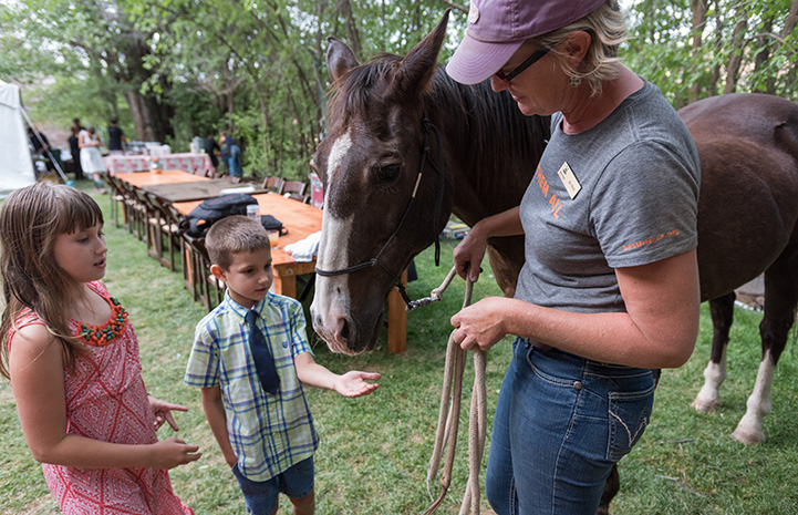 Billy Bob the horse being led by a woman and meeting two children