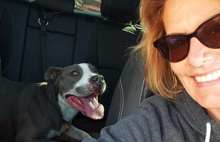 Selfie of a woman with Rocco the dog in the back seat of a car